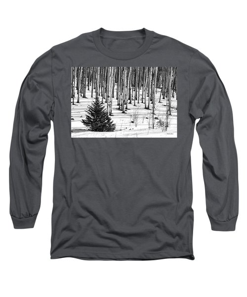 Looking Through The Aspen Black And White Long Sleeve T-Shirt