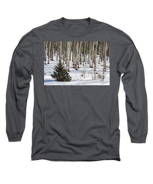 Looking Through The Aspen Long Sleeve T-Shirt