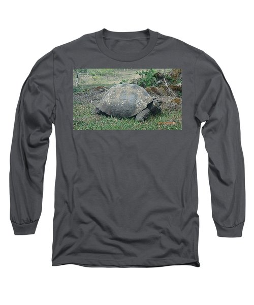Looking Long Sleeve T-Shirt by Will Burlingham