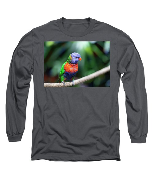 Lorikeet Long Sleeve T-Shirt