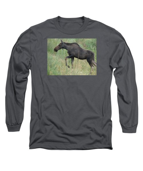 Lost Moose On The Loose In Evergreen Colorado Long Sleeve T-Shirt
