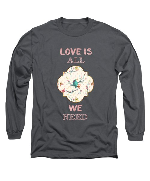 Love Is All We Need Typography Hummingbird And Butterflies Long Sleeve T-Shirt