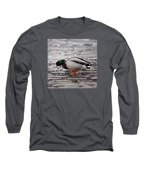 Long Sleeve T-Shirt featuring the photograph Lunch Time by Jeremy Lavender Photography