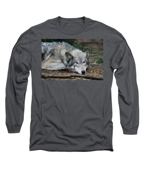 Long Sleeve T-Shirt featuring the photograph Lying In Wait by Laddie Halupa