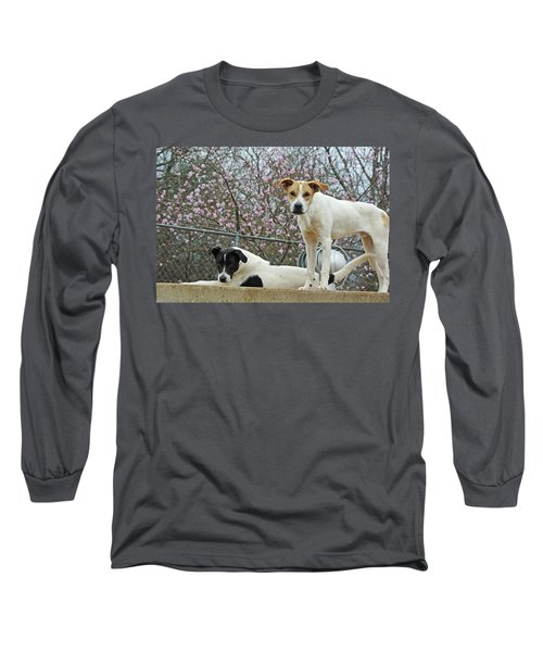 Maddy And Sammy Springtime Long Sleeve T-Shirt