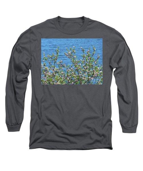 Magnolia Flowering Tree Blue Water Long Sleeve T-Shirt
