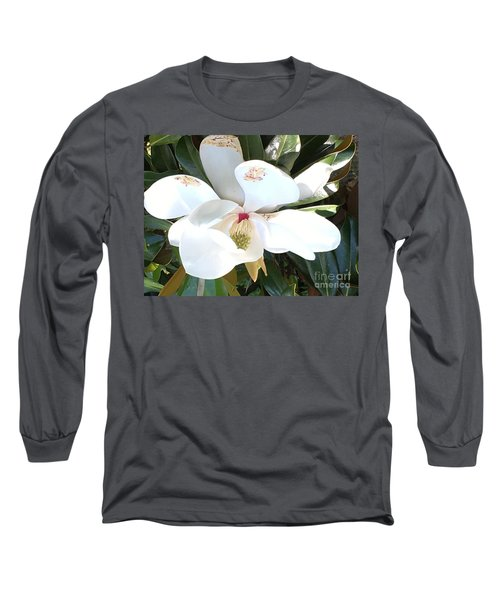 Long Sleeve T-Shirt featuring the photograph Magnolia Tree Bloom by Debra Crank