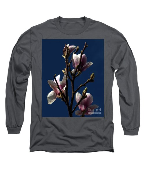 Long Sleeve T-Shirt featuring the photograph Magnolia Tree by Stephen Melia