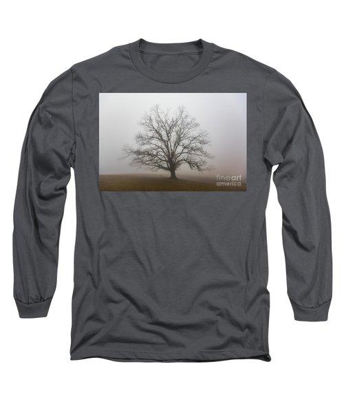 Majestic Fog Long Sleeve T-Shirt by Robert Loe