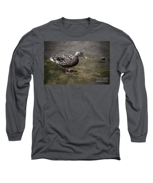 Malard,duckling Long Sleeve T-Shirt