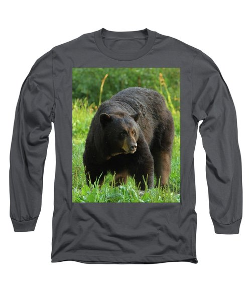 Male Black Bear In Late Light Long Sleeve T-Shirt