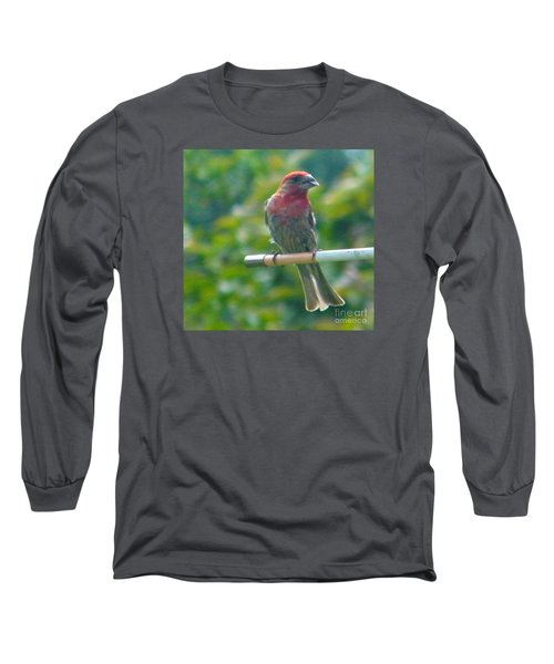 Male Crossbill With Sunflower Seed    August  Indiana Long Sleeve T-Shirt by Rory Cubel