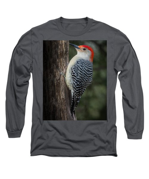 Male Red-bellied Woodpecker Long Sleeve T-Shirt by Kenneth Cole