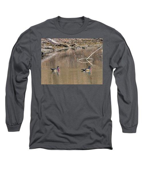 Male Wood Ducks Long Sleeve T-Shirt by Edward Peterson