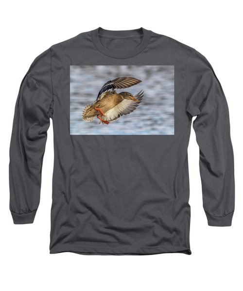 Mallard With Cupped Wings Long Sleeve T-Shirt by Paul Freidlund