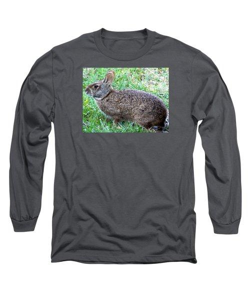 Long Sleeve T-Shirt featuring the photograph Marsh Rabbit Run Rabbit  by Chris Mercer
