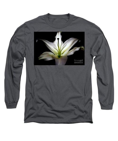 Masculinity Long Sleeve T-Shirt by Diana Mary Sharpton