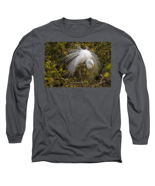 Mating Egret Long Sleeve T-Shirt