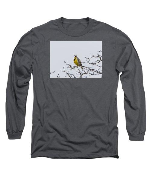 Meadowlark In Tree Long Sleeve T-Shirt