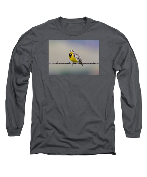 Meadowlark Stare Long Sleeve T-Shirt by Marc Crumpler