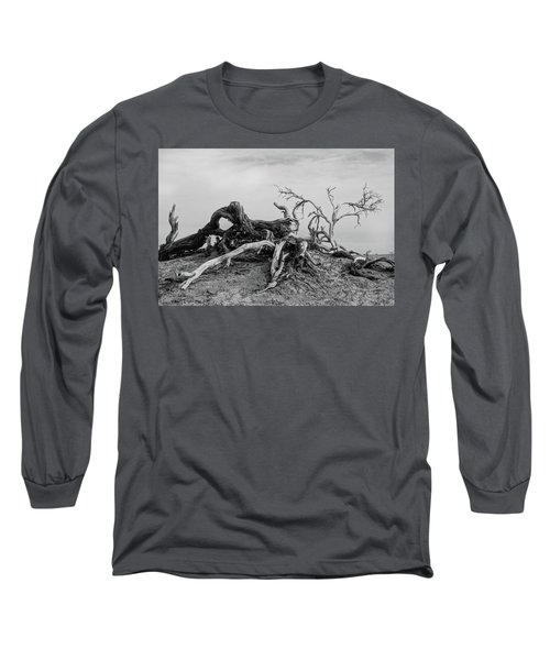 Mesquite Roots - Death Valley 2015 Long Sleeve T-Shirt