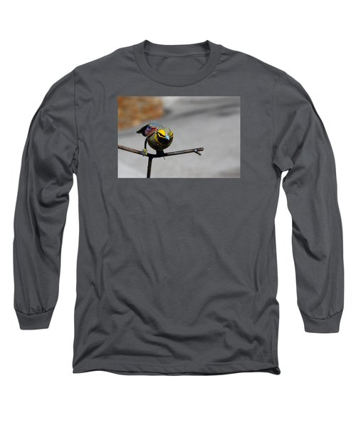 Long Sleeve T-Shirt featuring the photograph Metallic Bunting by Richard Patmore