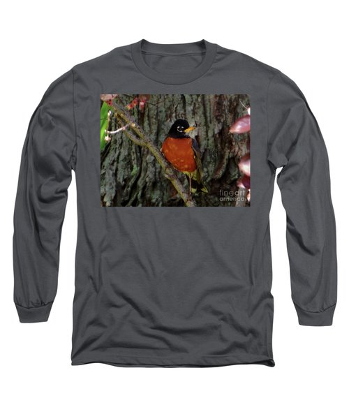 Michigan State Bird Robin Long Sleeve T-Shirt