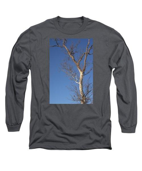 Mighty Tree Long Sleeve T-Shirt