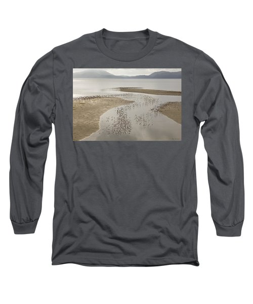 Migration Patterns Two Long Sleeve T-Shirt