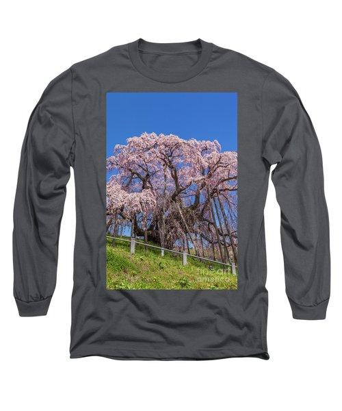 Long Sleeve T-Shirt featuring the photograph Miharu Takizakura Weeping Cherry55 by Tatsuya Atarashi