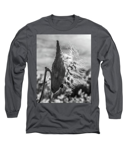 Milkweed Pod Back Lit B And W Long Sleeve T-Shirt