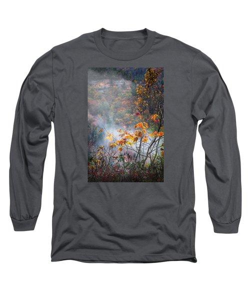 Misty Maple Long Sleeve T-Shirt by Diana Boyd