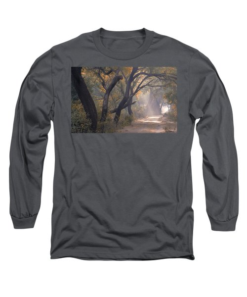 Long Sleeve T-Shirt featuring the photograph Misty Morning, Bharatpur, 2005 by Hitendra SINKAR