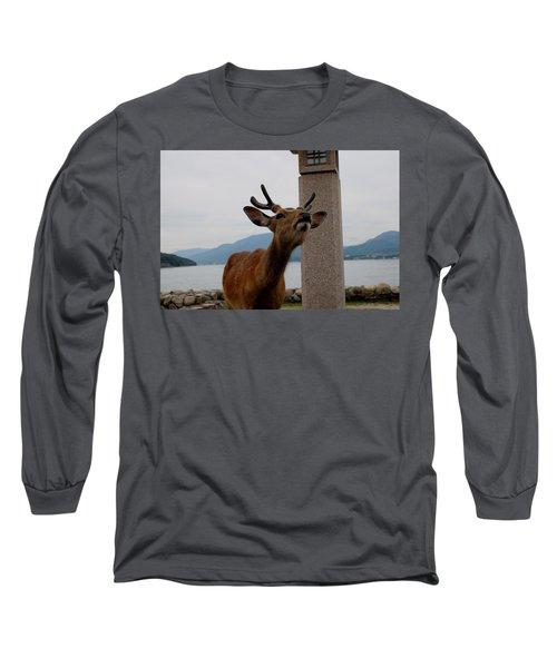 Miyajima Deer Long Sleeve T-Shirt