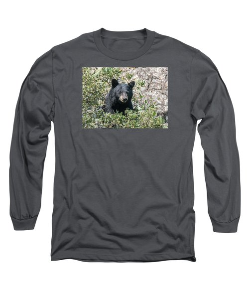 Momma Black Bear Eating Berries Long Sleeve T-Shirt by Stephen  Johnson