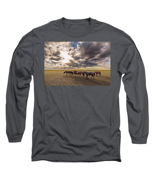 Long Sleeve T-Shirt featuring the photograph Mongolian Horses by Hitendra SINKAR