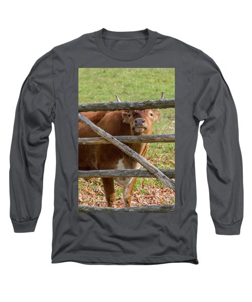Long Sleeve T-Shirt featuring the photograph Moo by Bill Wakeley