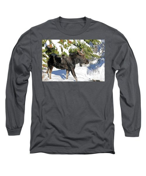 Moose In Snow Long Sleeve T-Shirt
