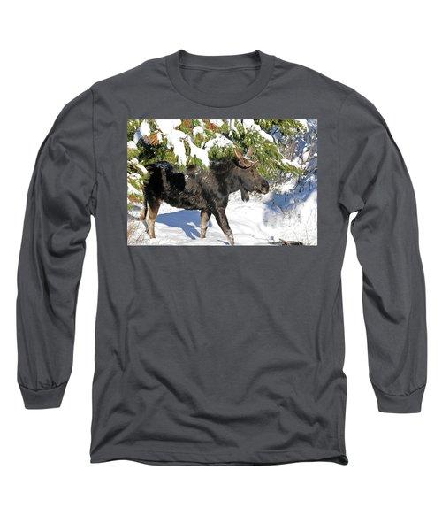 Moose In Snow Long Sleeve T-Shirt