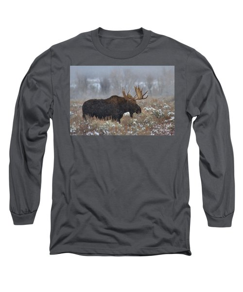 Long Sleeve T-Shirt featuring the photograph Moose In The Fog by Adam Jewell