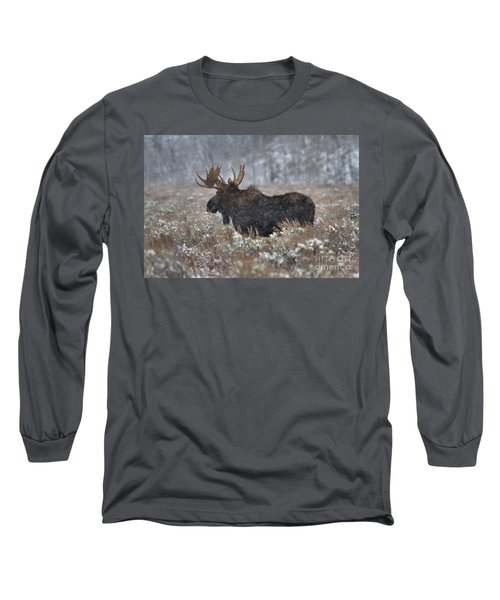 Long Sleeve T-Shirt featuring the photograph Moose In The Snowy Brush by Adam Jewell