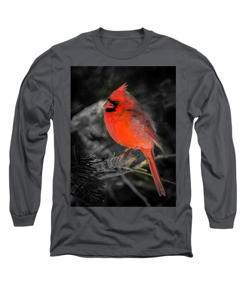 Morning Cardinal C Long Sleeve T-Shirt