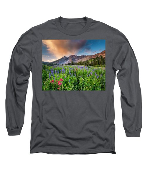 Morning Flowers In Little Cottonwood Canyon, Utah Long Sleeve T-Shirt