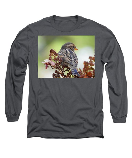 Morning Rest Long Sleeve T-Shirt by Betty-Anne McDonald