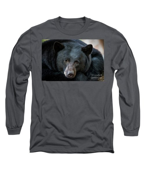 Mother Bear Long Sleeve T-Shirt by Mitch Shindelbower