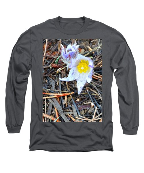 Mount Margaret Spring 14344 Long Sleeve T-Shirt by Jerry Sodorff