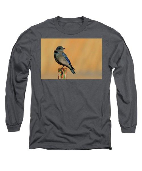 Mountain Bluebird Long Sleeve T-Shirt by Paul Marto
