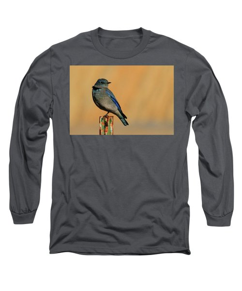 Mountain Bluebird Long Sleeve T-Shirt