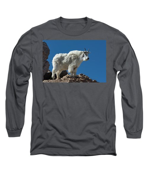 Long Sleeve T-Shirt featuring the photograph Mountain Goat 2 by Gary Lengyel