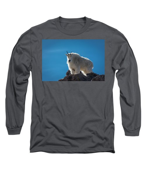 Long Sleeve T-Shirt featuring the photograph Mountain Goat 3 by Gary Lengyel